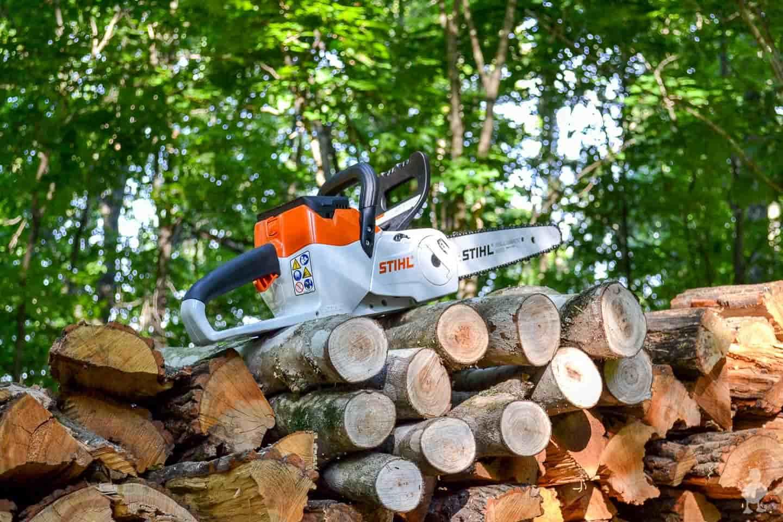 chainsaw sitting on cut logs