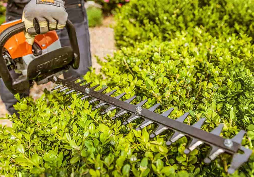 commercial landscaping columbia sc