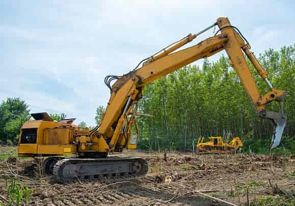 land clearing and tree removal columbia south carolina
